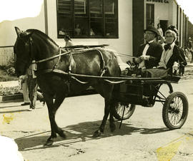 Frank and Doris Buckley in horse-drawn carriage