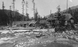 Yapp's logging camp