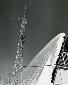 Person climbing telephone tower