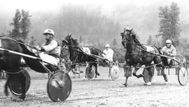 Pat Brennan harness racing on Smokey Downs track