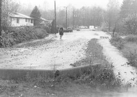 Flood on Harris Road
