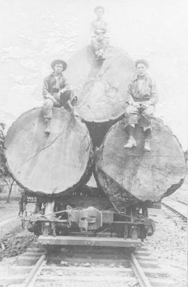 Three men on logs