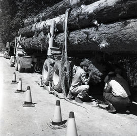 Men and logging truck