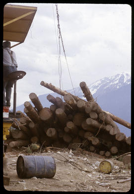 Bringing in logs