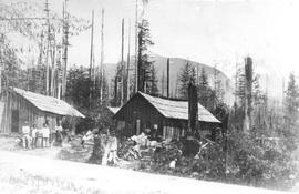 Lamb's logging camp