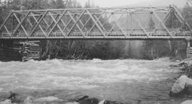 Cheakamus Bridge