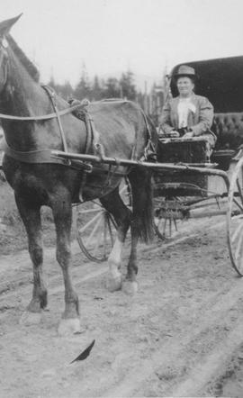 Mrs Catherine Rae in a horsedrawn carriage