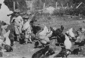 Fred and Vera Barnfield feeding chickens
