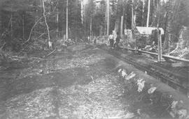Yapp's Logging Camp 1910