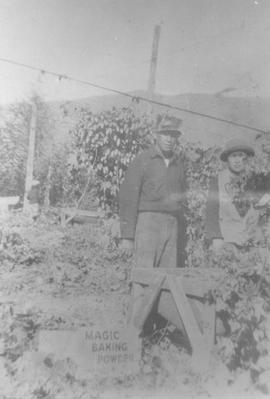Workers at Sardis Hop Farm